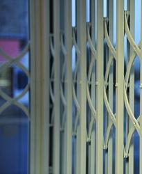 Citadel Plus Commercial Security Grille image