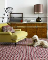 Quirky B - Carpets image
