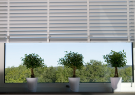 The Classic 50 system includes all you need to produce attractive 50 mm venetian blinds of proven quality. Equally suitable for aluminium, wood and composite slats, the system opens the door to the widest assortment of slats and colour-matched components. Cove...