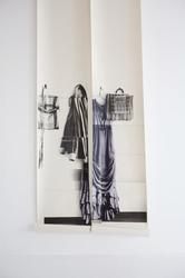 Ballgown & Coat image