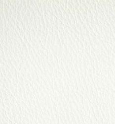 Bone White image