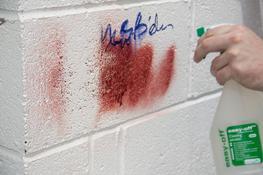 easy-off Safe Graffiti Remover Sprays image