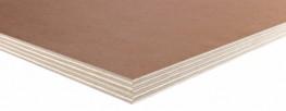 WISA-Paintply Birch image