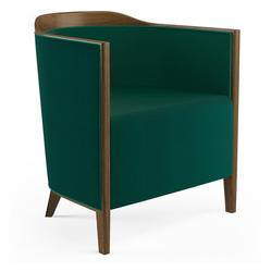 Delta Lounge Chair image