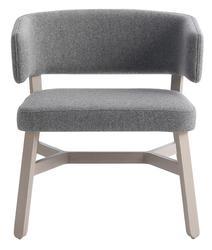 Plume Lounge Chair image