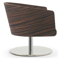 Electra Lounge Chair image