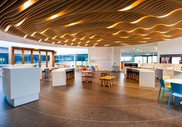 Supaslat - Decorative Suspended Ceilings image
