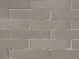 Salvia - <strong>Paving Bricks</strong> image