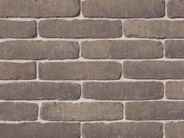 Camel - <strong>Paving Bricks</strong> image