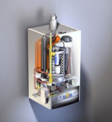 Wolf CGB - Commercial Building Boilers image