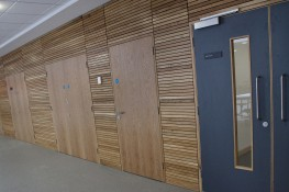 TYPE 12 - Education Doorset - Ahmarra Door Solutions Ltd