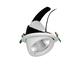 Luminare 34 W Adjustable Downlight image