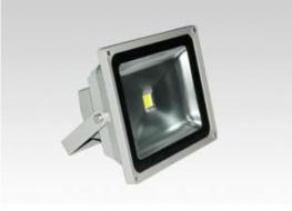 Ecusol LED Floodlight image