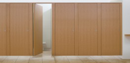 Ribbon - Toilet Cubicles image