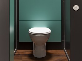 These full-height panel systems protect the walls behind the washroom toilets and showers. The panels are more hygienic and easier to clean than painted walls. Exposed pipes and plumbing are hidden by the panels. They give washrooms a more professional and cle...