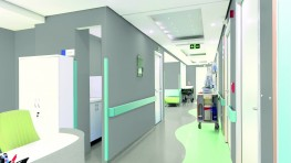 Designed for heavy traffic applications such as education and healthcare facilities, Primo Premium is a homogeneous vinyl flooring solution for areas where hygiene and resistance are key. Our PUR Reinforced surface treatment guarantees enhanced protection and ...