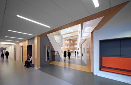 The durable, low-maintenance linoleum, ideal for hotels, offices and retail spaces, as well as education buildings, was chosen for all public spaces, technical classrooms and school kitchens.