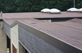 Great ... Roof Edge Trims. By Whitesales. U2039 U203a