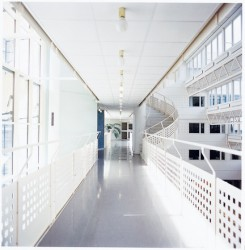 For applications where a standard suspended ceiling system is required, but where strict functional requirements are needed. Ecophon Gedina A has an exposed grid. Each tile is easily demountable. The system consists of Ecophon Gedina A tiles and Ecophon Connec...