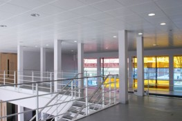 SAS System 120 is a range of square and rectangular clip-in metal ceiling tiles supported from a concealed SAS Spring Tee suspension grid. SAS System 120 is particularly suitable for food preparation areas and hospitals where cleanliness is of importance....