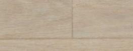Eternal Wood image
