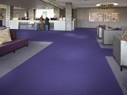 Flotex Flocked flooring -  Penang image