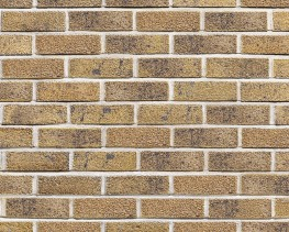 Stately Brick - Facing brick with crisp edges and striking colours - AG