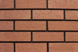 Red Dragface - Lagan Brick