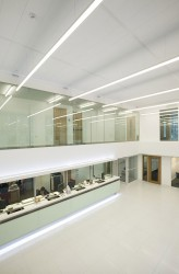 Thermatex Acoustic 1800 mm x 300 mm AW-SK - Knauf AMF Ceilings