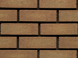 Wirecut brick (73mm), buff in colour with a rusticated texture....