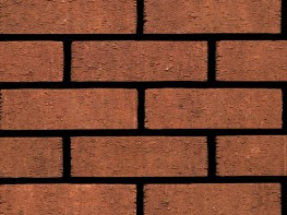 Anglian Red Rustic 73mm image