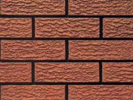 Wirecut brick (65mm), red in colour with a rusticated texture.