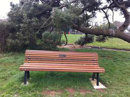 Park Seat - Outdoor Seating image