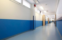 Provides an impact resistant surface to walls, doors and cupboards. Intastop Textured Impact Protection Sheets are Class 'O' fire rated and tested to BS476: Parts 6 & 7.  Sheets can be ordered pre-cut to size for half height and shaped plates, kick and pus...