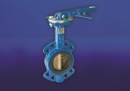 Semi-lugged Wafer Pattern Butterfly Valve. Ductile Iron Body. Aluminum Bronze Disc. Liner bonded to steel backing ring. High strength, low friction bearings for upper and lower shafts, to restrain shaft deflection and ensure effective stem sealing....