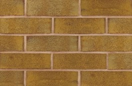 Welcome to Carlton  Carlton forms part of Michelmersh Brick Holdings PLC, a UK stock market listed company producing over 100 million clay bricks, tiles and pavers annually. The enlarged Group currently owns six of the UKís most recognised premium brands: B...