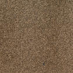 Scala Forum - Broadloom Carpet image
