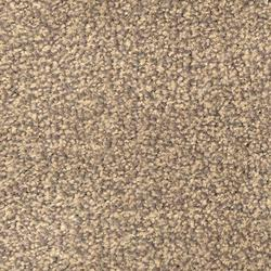 Scala Solutions - Broadloom Carpet - CFS Complete Flooring Solutions