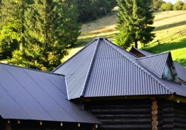Trapezoidal Insulated Roof and Wall Panels image