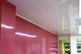 Proclad Hygienic Ceiling - uPVC Ceiling Cladding Panels - Interior Panel Systems Ltd