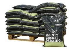 Cricket loams image