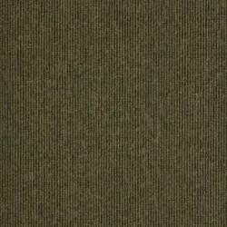 Macaw Stripe image