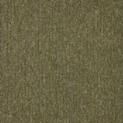 Sirocco Stripe image