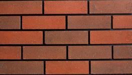 Holkham Red image