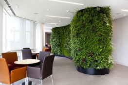 ANS Global Living Wall System - ANS Global