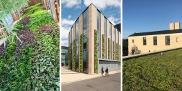 CPD & Workshop Event: Living Walls & Roofs