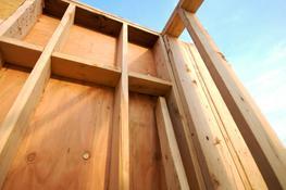 Structural Hardwood / Softwood Plywood image