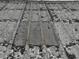 Advantage for Asbestos Roofs - Alltimes Coatings