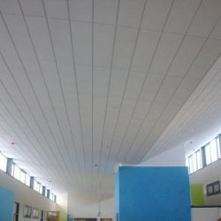 There are many benefits to CEP's Classcare dB Plus acoustic ceiling tile. Not only is it aesthetically impressive... Classcare Plus dB utilises the same durable, baseboard as Classcare dB tiles but with an acoustic fleece bonded to the face. This creates a c...