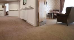 Equinox - Carpets image